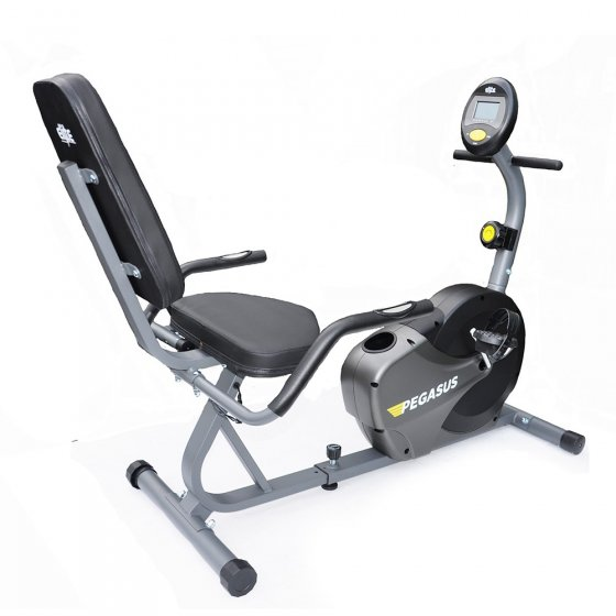 Pegasus recumbent hire exercycle or similar elite fitness nz