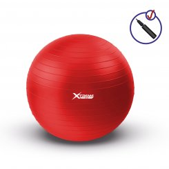 PROFESSIONAL STABILITY GYM BALL