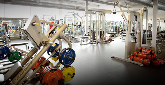Commercial fitness gym equipment nz elite