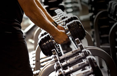 Bars, Plates & Dumbbells Workout Guide